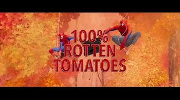 Spider-Man: Into the Spider-Verse - Alternate Trailer 39