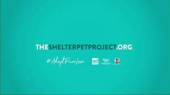 The Shelter Pet Project TV Spot, 'Adopt Pure Love: Olivia Munn' Song by Peggy Scott & Jo Jo Benson - Thumbnail 8