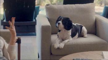 The Shelter Pet Project TV Spot, 'Adopt Pure Love: Olivia Munn' Song by Peggy Scott & Jo Jo Benson - Thumbnail 3