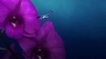Cayman Islands Department of Tourism TV Spot, 'Dream: Snorkel in Flowers'