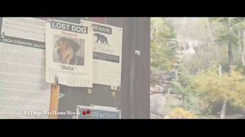 A Dog's Way Home - Alternate Trailer 24