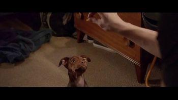 A Dog's Way Home - Alternate Trailer 22