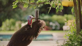 Chantix TV Spot, 'Slow Turkey' - Thumbnail 9