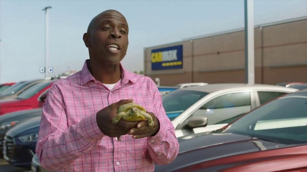 Carmax Tv Commercial Turtle Featuring Andy Daly Gary Anthony