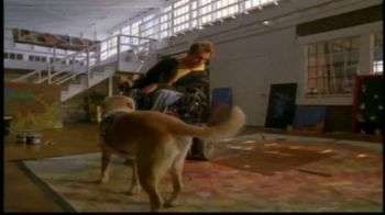 Canine Companions for Independence TV Spot, 'Tommy' - Thumbnail 3