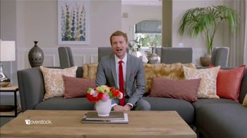 Overstock.com TV Spot, 'Oscar LaVista' - Thumbnail 9