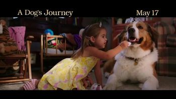 A Dog's Journey - Alternate Trailer 9