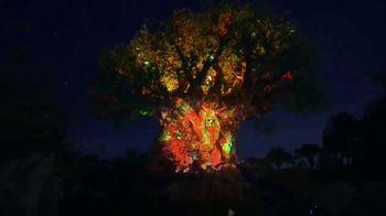 DisneyWorld TV Spot, 'Seize the Magic This Summer'