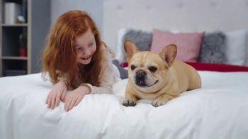 Mattress Firm Memorial Day Preview Sale TV Spot, 'Beautyrest Queen: King for a Queen' - Thumbnail 9