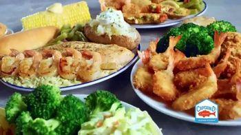Captain D's Ultimate Shrimp Feast TV Spot, 'Shrimp-ly Amazing' - Thumbnail 8