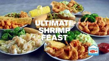 Captain D's Ultimate Shrimp Feast TV Spot, 'Shrimp-ly Amazing' - Thumbnail 9