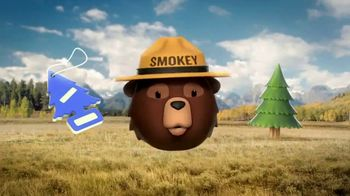 Smokey Bear Campaign TV Spot, 'Stephen Colbert: Smokey Bear's 75th Birthday' - Thumbnail 10