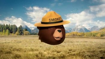 Smokey Bear Campaign TV Spot, 'Stephen Colbert: Smokey Bear's 75th Birthday' - Thumbnail 2