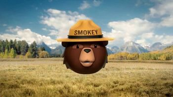 Smokey Bear Campaign TV Spot, 'Stephen Colbert: Smokey Bear's 75th Birthday' - Thumbnail 5