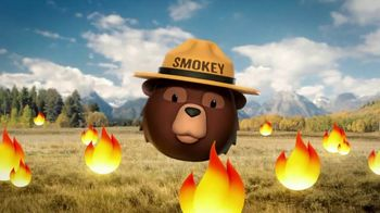 Smokey Bear Campaign TV Spot, 'Stephen Colbert: Smokey Bear's 75th Birthday' - Thumbnail 8