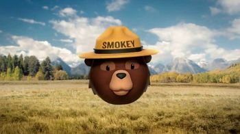 Smokey Bear Campaign TV Spot, 'Stephen Colbert: Smokey Bear's 75th Birthday' - Thumbnail 9