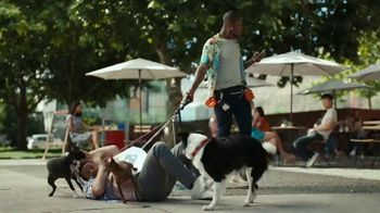 Domino's Carryout Insurance TV Spot, 'Fault'