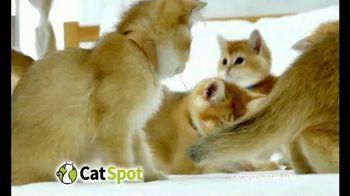 CatSpot TV Spot, 'Just an Inch' - Thumbnail 7