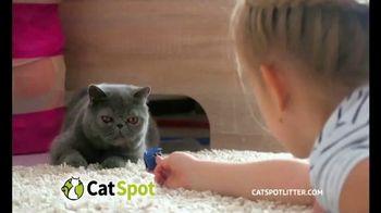 CatSpot TV Spot, 'Just an Inch' - Thumbnail 8