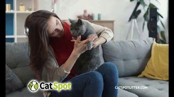 CatSpot TV Spot, 'Just an Inch' - Thumbnail 9