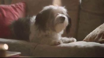 Kohl's TV Spot, 'Savings Add Up: adidas Gear' Song by Rayelle - Thumbnail 7