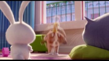 Clear the Shelters TV Spot, 'The Secret Life of Pets 2: Fund the Shelters Challenge' - Thumbnail 1