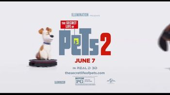 Clear the Shelters TV Spot, 'The Secret Life of Pets 2: Fund the Shelters Challenge' - Thumbnail 10