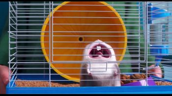 Clear the Shelters TV Spot, 'The Secret Life of Pets 2: Fund the Shelters Challenge' - Thumbnail 5