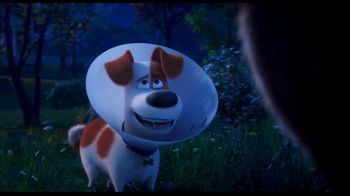 Clear the Shelters TV Spot, 'The Secret Life of Pets 2: Fund the Shelters Challenge' - Thumbnail 7
