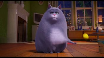Clear the Shelters TV Spot, 'The Secret Life of Pets 2: Fund the Shelters Challenge'