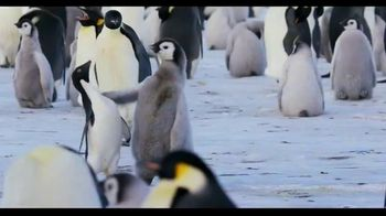 Penguins - Alternate Trailer 38