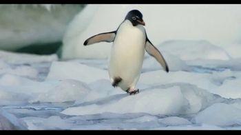 Penguins - Alternate Trailer 37
