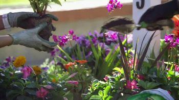 The Home Depot TV Spot, 'PBS: Your Garden, Your Schedule' - Thumbnail 7