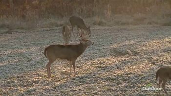 Purina AntlerMax Rut & Conditioning Deer 16 TV Spot, 'Retain Body Condition' - Thumbnail 4