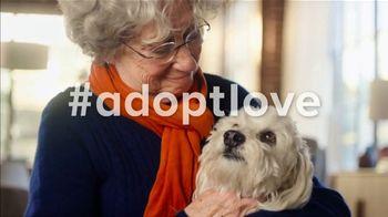 PetSmart National Adoption Weekend Event TV Spot, 'Adoption Love Story' - Thumbnail 7