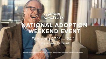 PetSmart National Adoption Weekend Event TV Spot, 'Adoption Love Story' - Thumbnail 9