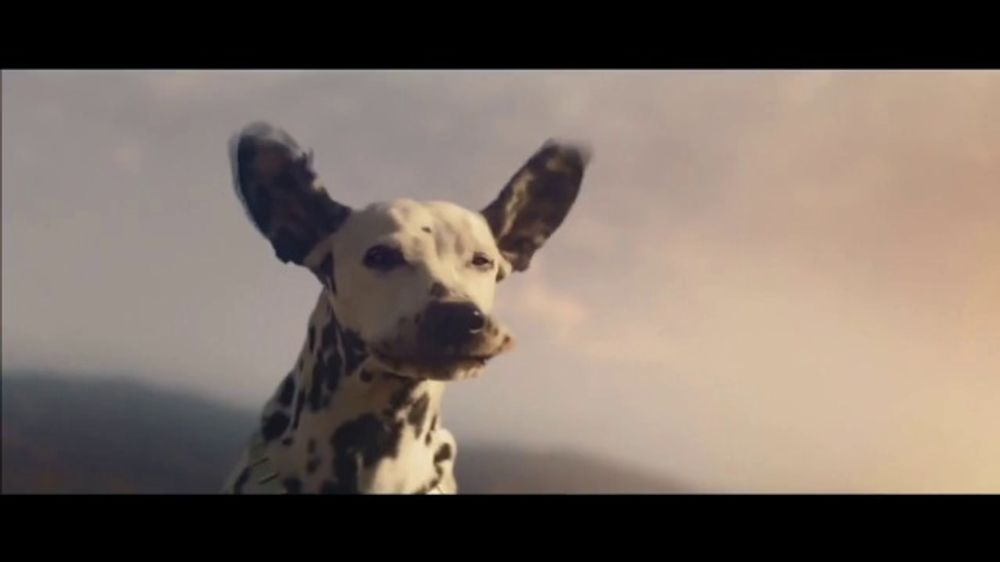 Budweiser Super Bowl 2019 TV Commercial, 'Wind Never Felt Better' Song by Bob Dylan