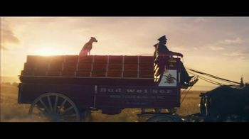 Budweiser Super Bowl 2019 TV Spot, 'Wind Never Felt Better' Song by Bob Dylan - Thumbnail 4