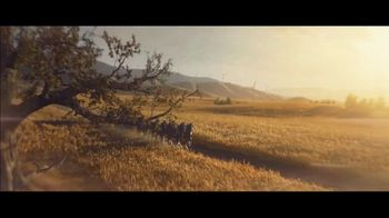 Budweiser Super Bowl 2019 TV Spot, 'Wind Never Felt Better' Song by Bob Dylan - Thumbnail 8