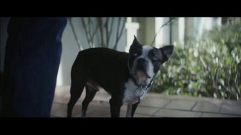 Amazon Super Bowl 2019 TV Spot, 'Ordering Dog Food' Featuring Harrison Ford - Thumbnail 10
