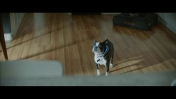 Amazon Super Bowl 2019 TV Spot, 'Ordering Dog Food' Featuring Harrison Ford - Thumbnail 5
