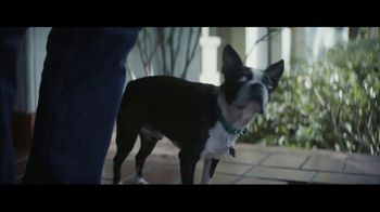 Amazon Super Bowl 2019 TV Spot, 'Ordering Dog Food' Featuring Harrison Ford - Thumbnail 9
