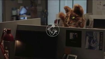 Arm & Hammer Pet Care Clump & Seal Cat Litter TV Spot, 'The Change Needed' - Thumbnail 1