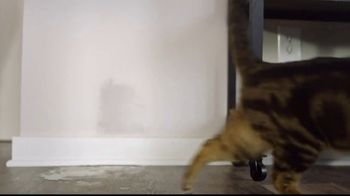 Feliway TV Spot, 'You Would Not Put Up With It If Someone Else Did It' - Thumbnail 7