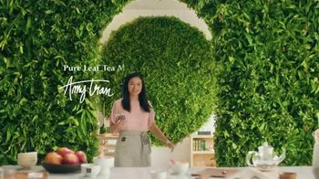 Pure Leaf Herbal Peach Hibiscus Tea TV Spot, 'Booming With Flavor' - Thumbnail 1