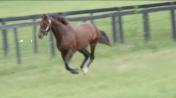Gallery Racing TV Spot, 'Run Happy: Must Have' - Thumbnail 2