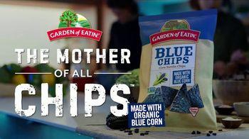 Garden of Eatin' Blue Corn Tortilla Chips TV Spot, 'Spaceship' - Thumbnail 10
