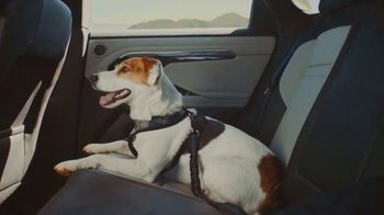 2020 Range Rover Evoque TV Spot, 'A Dog's Dream' [T2] - Thumbnail 5