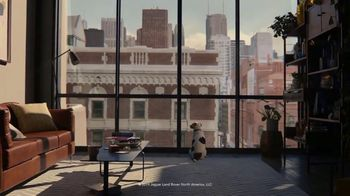 2020 Range Rover Evoque TV Spot, 'A Dog's Dream' [T2] - Thumbnail 8