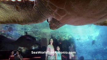 SeaWorld + Aquatica TV Spot, 'Turtle Reef: Now Open' - Thumbnail 10